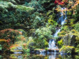 Бесплатные фото Waterfall,Japanese Gardens,Portland,осень,парк,водопад,водоём