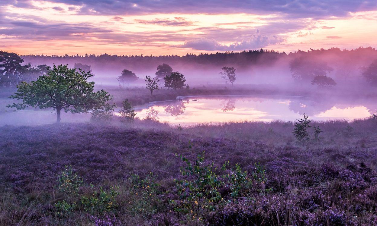 Фото бесплатно Afferden, Netherlands, поле - на рабочий стол