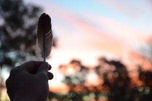 Фото бесплатно перо, рука, красивая, парк, небо, солнечный лучик, палец