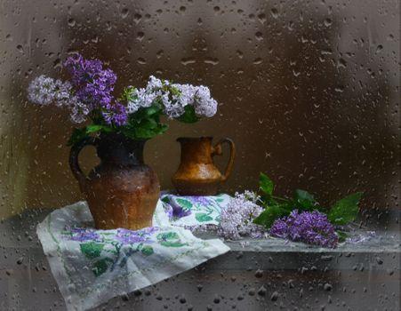Заставки букет, влажное стекло, натюрморт