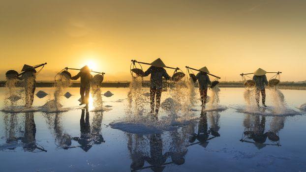 Photo free vietnam people, sunrise, farm