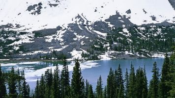 Фото бесплатно леса, горы, хвоя