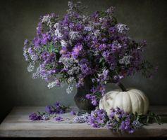 Бесплатные фото натюрморт,ваза,цветы,стол,тыква