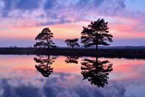 Фото бесплатно озеро, отражение, силуэты