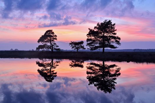 Заставки озеро, отражение, силуэты
