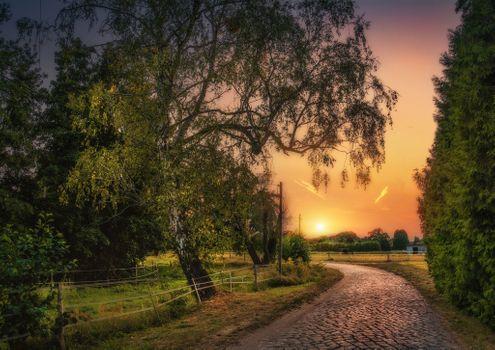 Бесплатные фото закат,дорога,деревья,заход солнца,парк,пейзаж