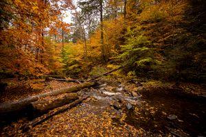 Фото бесплатно США, Пенсильвания, река
