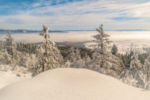 Бесплатные фото Spokane Valley,Washington,зима,горы,снег,сугробы,деревья