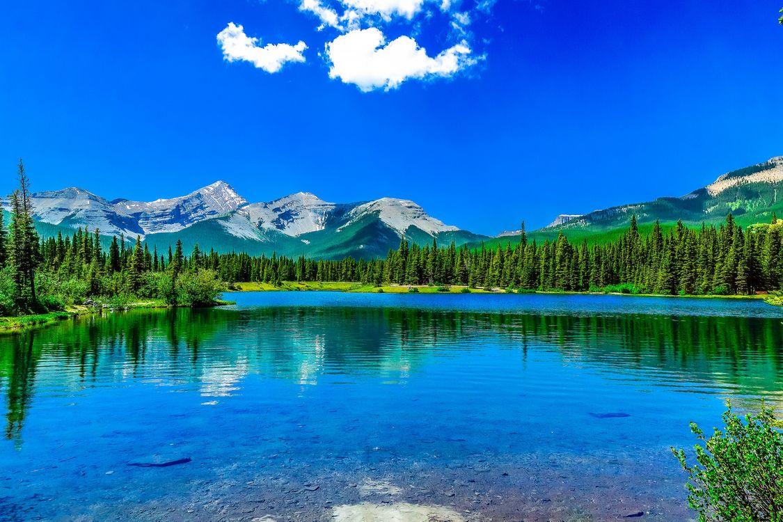 Фото бесплатно Брэгг Крик, альберта, Канада, Калифорния, озеро, горы, деревья, пейзаж, пейзажи
