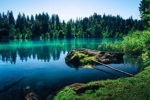 Фото бесплатно природа, остров, озеро