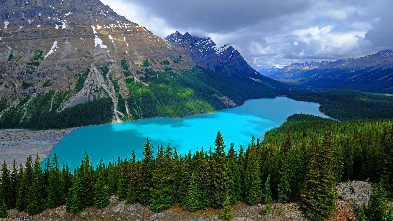 Фото бесплатно Peyto Lake, Banff National Park, Alberta, Canada, озеро, горы, скалы, лес, деревья, пейзаж, Озеро Пейто, Национальный Парк Банф, Альберта, Канада, пейзажи