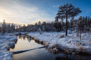 Бесплатные фото Finland,Lapland,Финляндия,Лапландия,зима,снег,река