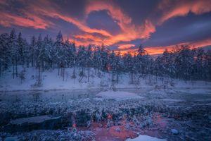 Бесплатные фото Ringerike,Norway,закат,зима,снег,водоём,деревья