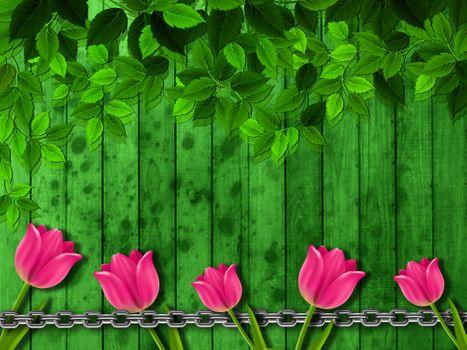 Бесплатные фото тюльпаны,фон,текстура,цветочная композиция