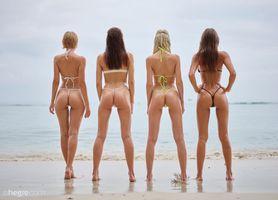 Фото бесплатно модель, красотки, Bikini Girls