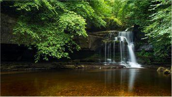 Бесплатные фото Cauldron Falls,West Burton,Yorkshire Dales National Park,пороги,вода,лесной пейзаж,водопад