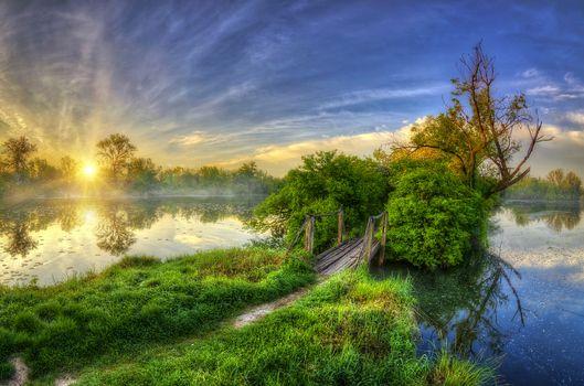 Photo free trees, sun rays, river