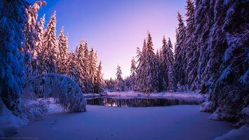 Заставки После снегопада, зима, Кодал
