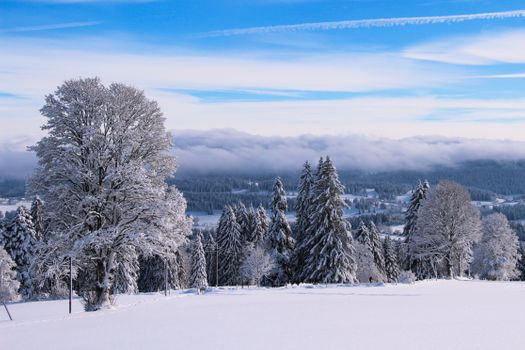 Photo free Switzerland, winter, snow