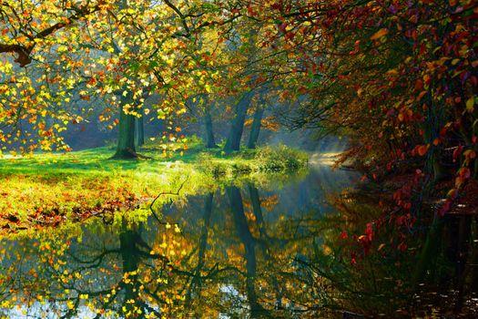 Заставки осень, осенний парк, лес
