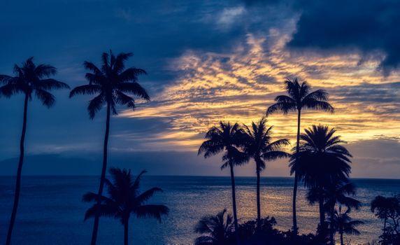 Фото бесплатно Гавайи, Остров Мауи, Hawaii