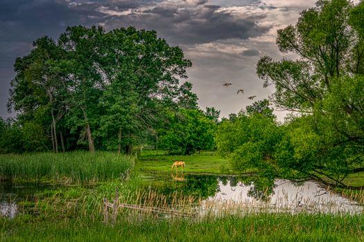 Уютное место в Миннесоте у реки