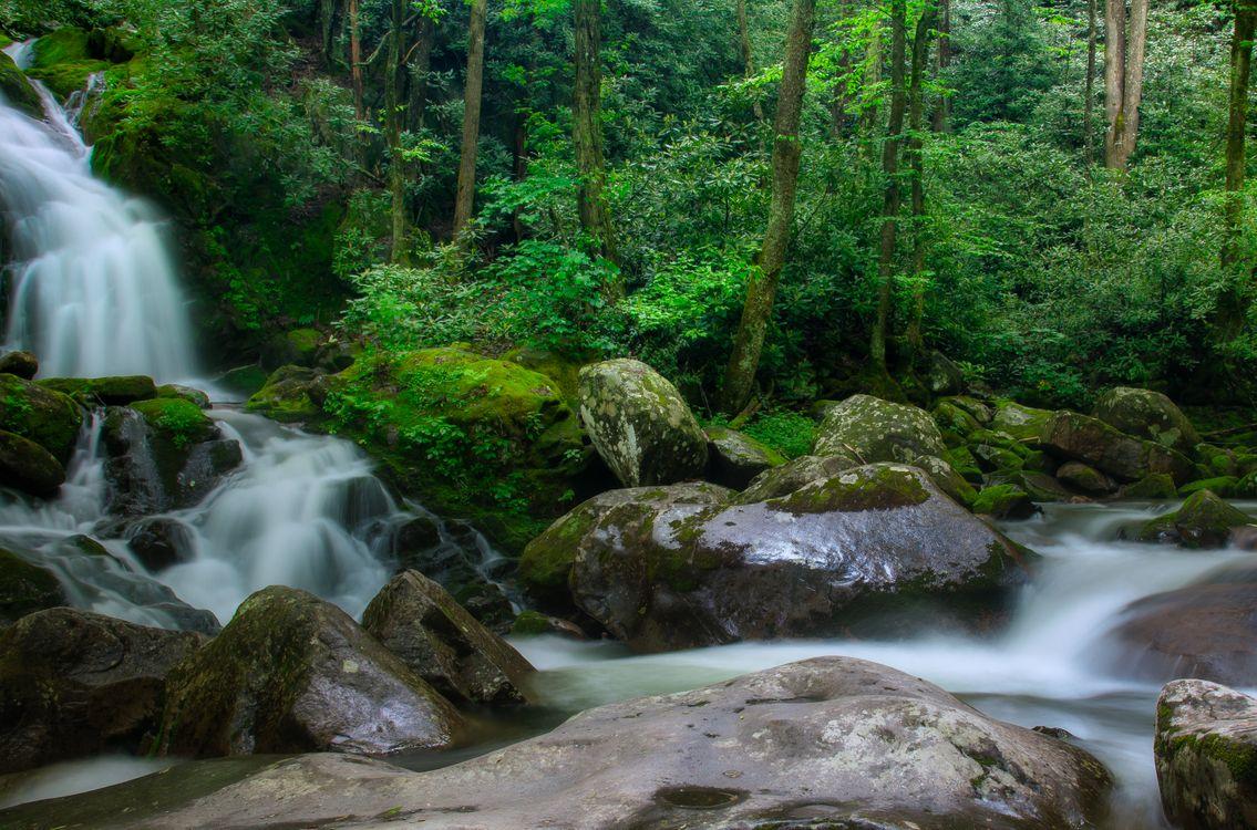 Фото бесплатно North Carolina, Great Smoky Mountains National Park, водопад - на рабочий стол