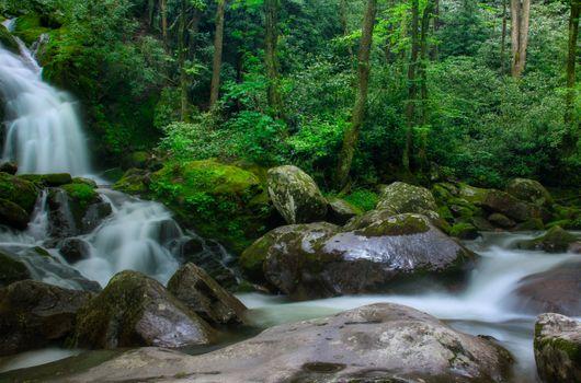 Фото бесплатно North Carolina, Great Smoky Mountains National Park, водопад, река, камни, лес, деревья, природа, пейзаж