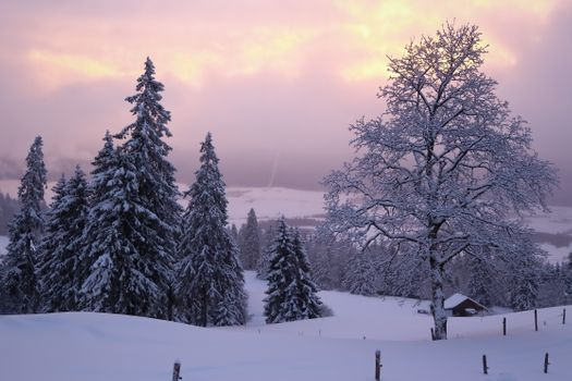 Заставки Утро зима в Тет-де-Ран,Невшатель,Швейцария,рассвет,зима,снег,домик,деревья,природа,пейзаж
