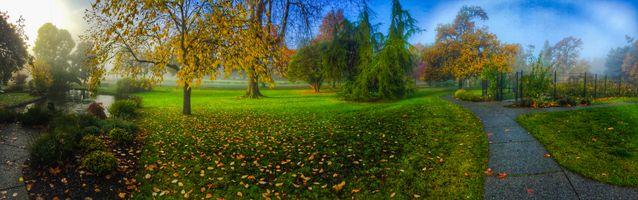 Фото бесплатно пруд, осенние листья, пейзаж