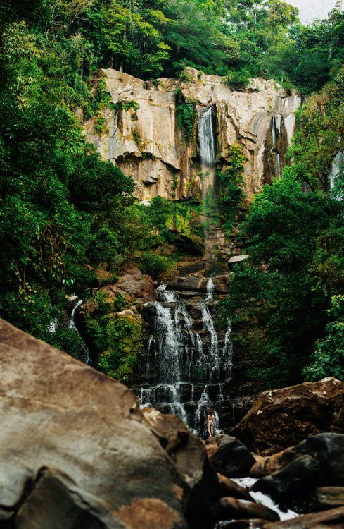 Фото бесплатно обои, лес, синий, природа, Коста-Рика, путешествия, место - на рабочий стол