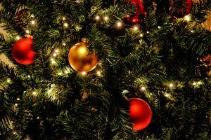 Фото бесплатно праздник, украшение, зеленый, красный, день отдыха, рождество, пихта, рождественская елка, время года, праздничный, орнамент, рождественские украшения, религиозный, спортивное снаряжение, золото, сезонный, сфера, мячи, рождественский бал, декабрь, блестящий, древесное растение