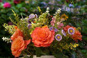 Фото бесплатно цветок, оригинальный, цветочный