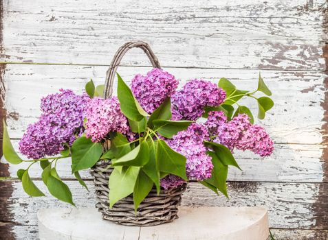 Wallpapers bouquet of lilac flora