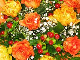 Заставки флора, цветочные, Красивый букет