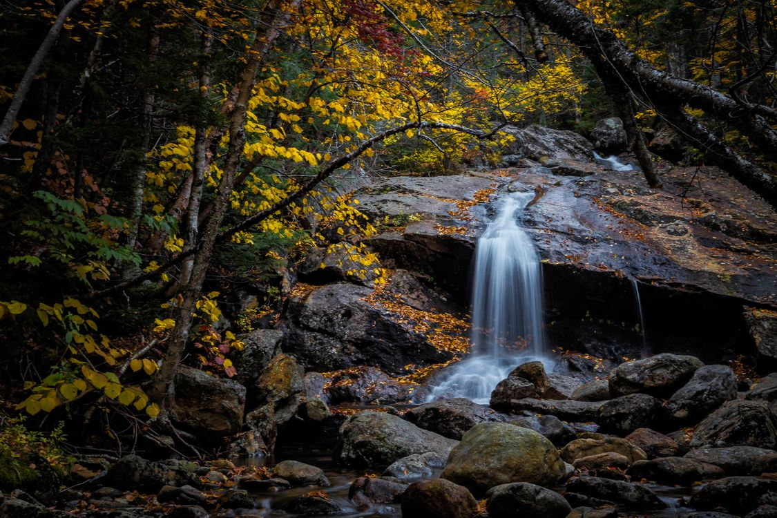 Ручей стекающий со скалы · бесплатное фото