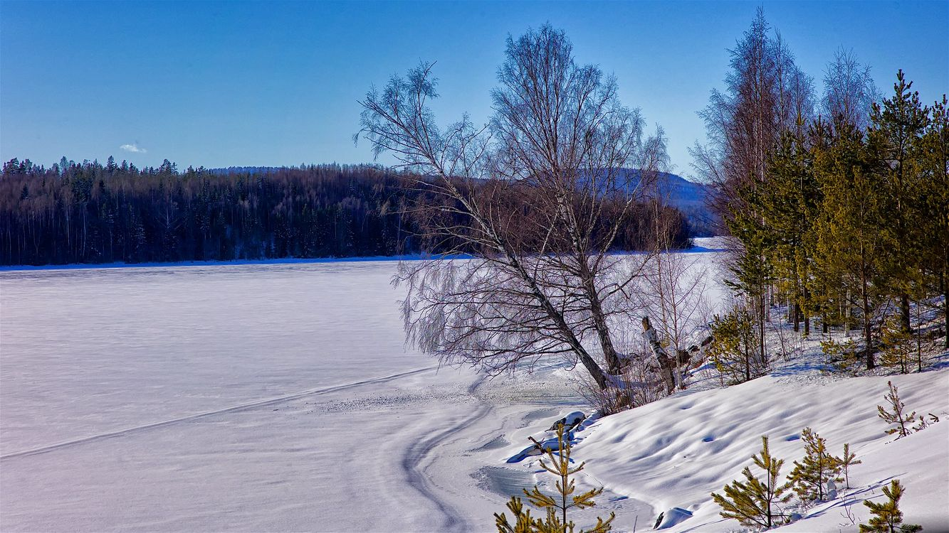 Фото бесплатно природа, зима, река - на рабочий стол