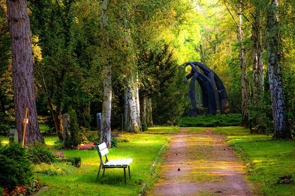 Фото бесплатно bench, carved, cemetery - на рабочий стол