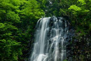 Заставки лес,деревья,скалы,водопад,природа