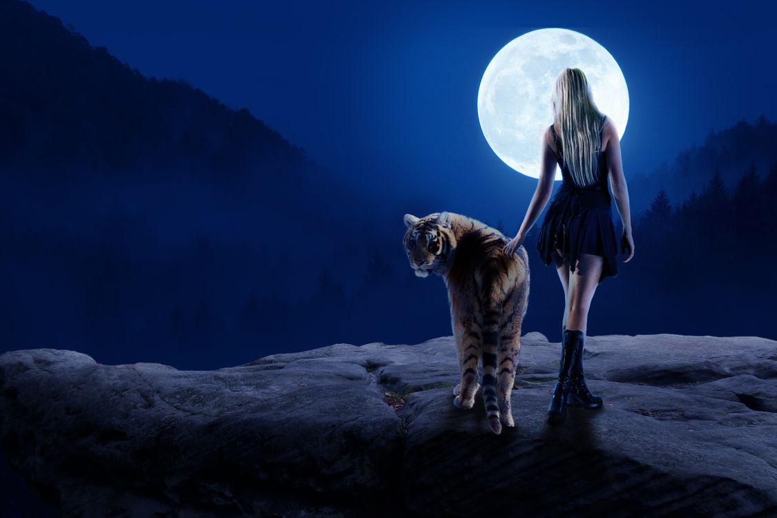 Фото бесплатно ночь, луна, девушка, тигр, фотошоп, фантазия, art, рендеринг