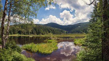 Заставки озеро в Баварском лесу, Германия горы деревья, водоём