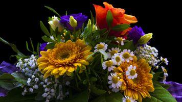 Фото бесплатно Красивый букет, букет, цветочная композиция, флора, цветы, цветок, цветочный, оригинальный, красочный, праздничный букет