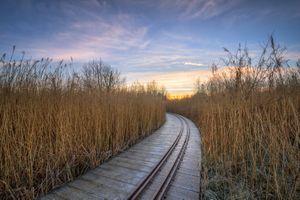 Бесплатные фото Oakfield Park,Рафо,графство Донегал,Ирландия