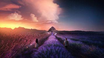Бесплатные фото закат солнца,лаванда,поле,небо,цветы,парень,девушка