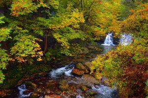 Фото бесплатно осенний водопад, река, осень