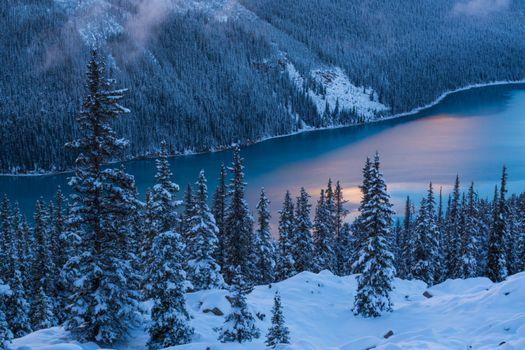 Бесплатные фото Peyto Lake,Banff National Park,Озеро Пейто,национальный парк Банф,Альберта,Канада,закат,зима,озеро,горы,деревья,пейзаж