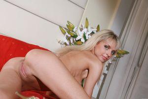 Фото бесплатно Natasha D, красотка, голая, голая девушка, обнаженная девушка, позы, поза, сексуальная девушка, эротика, Nude, Solo, Posing, Erotic, фотосессия