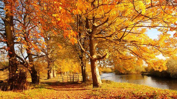 Заставки осень, красота, озеро