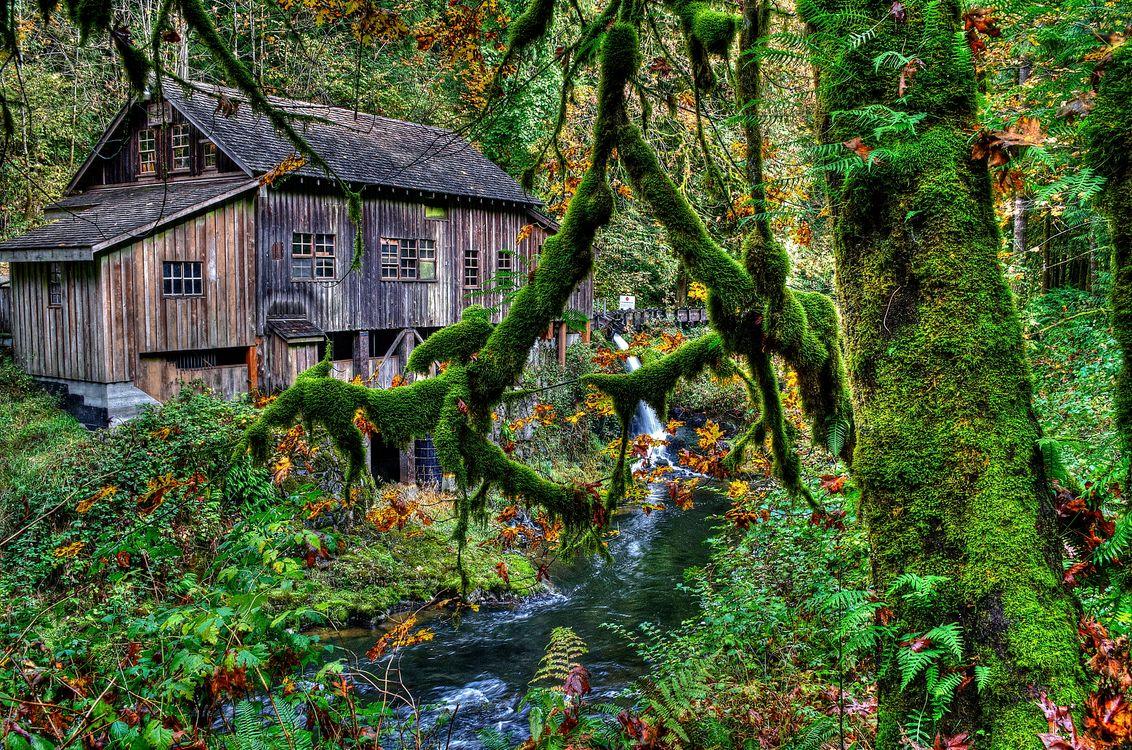 Free photo waterfall, river, Cedar Creek Grist Mill - to desktop