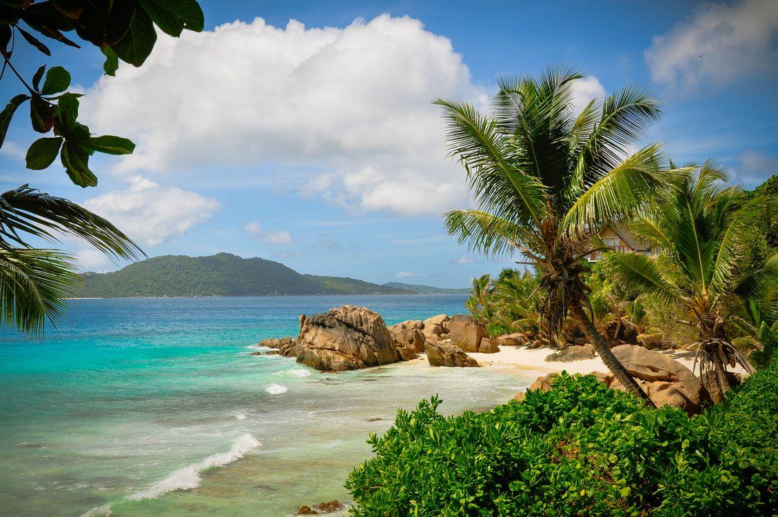 Фото бесплатно Seychelles, Сейшельские острова, море, берег, пляж, пейзаж, пейзажи